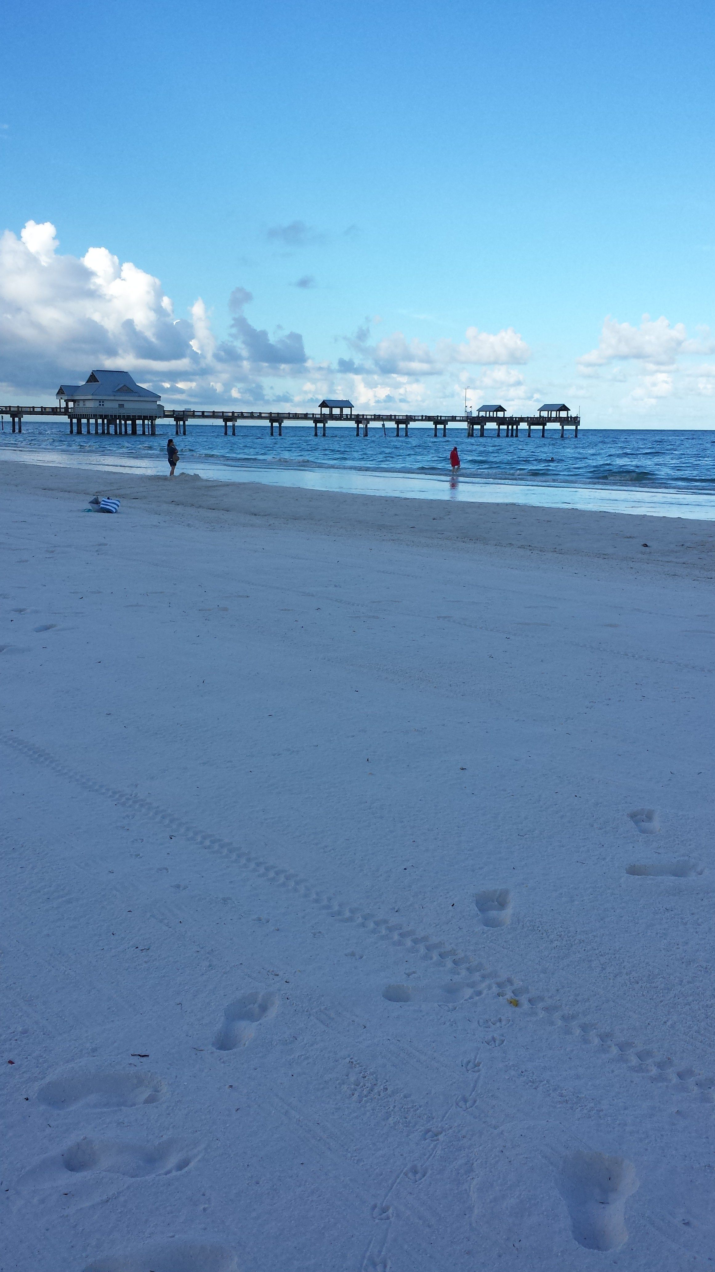 Clearwater Beach Wedding in the Morning
