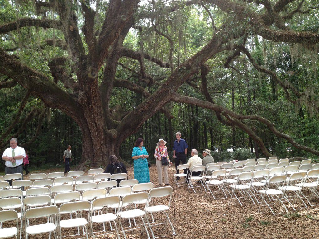 White ceremony chairs setup. Everyone getting ready for the wedding!
