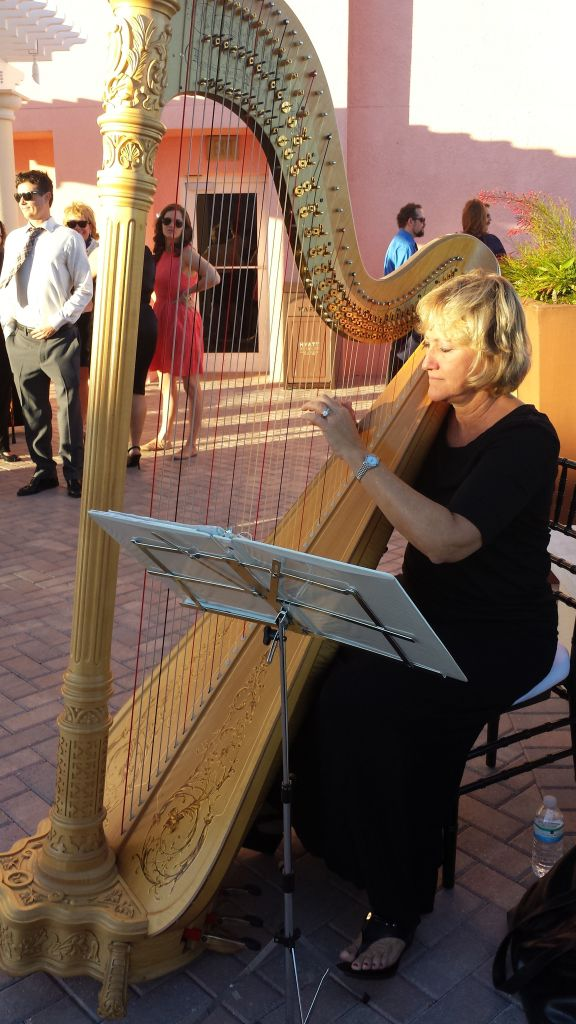 Harpist at
