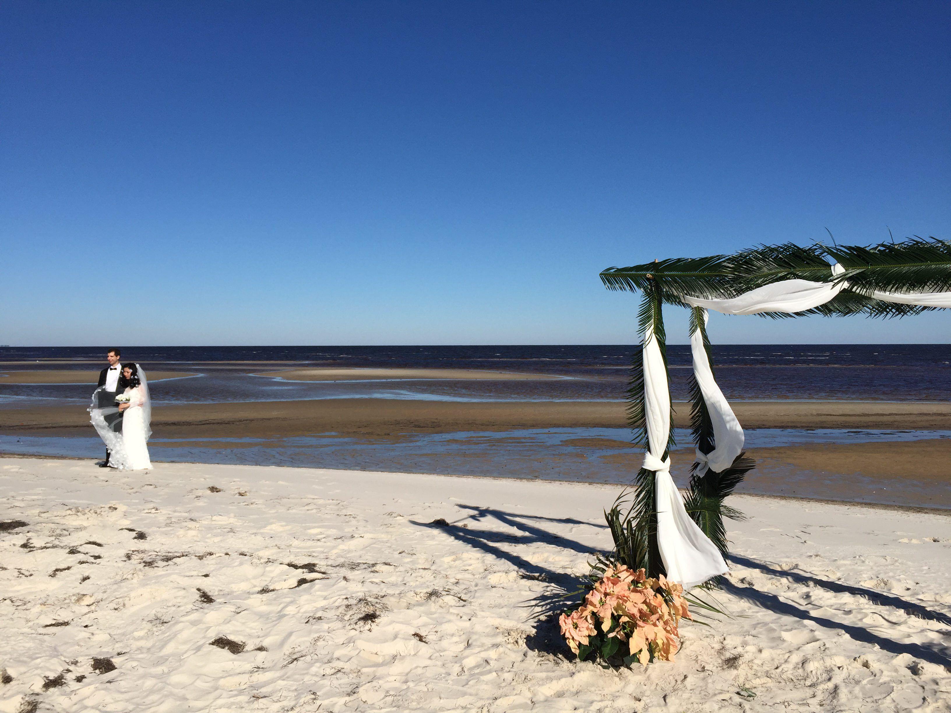 Chilly Panacea Wedding Ceremony